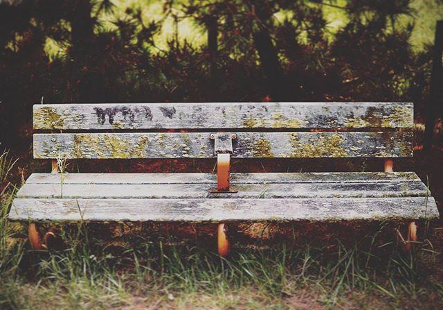 公園のベンチ。 - from Instagram